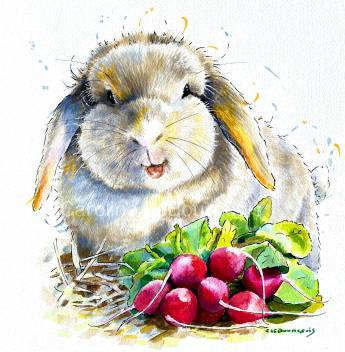 Smiling Rabbit-and-Radishes