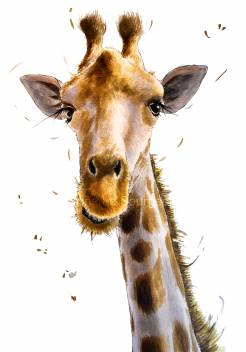 Jerry-the-Giraffe-low-Res-WM