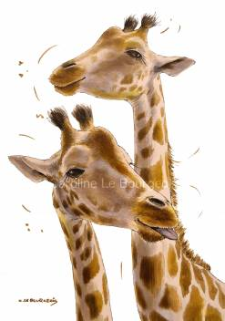 two-giraffes-Low-res-WM