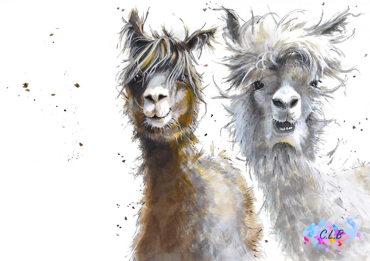 Alpacas animal painting fun lama