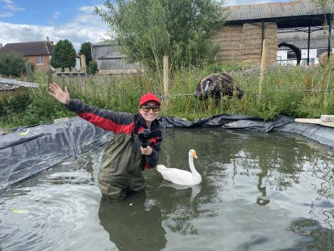In the pond with Giggle the goose