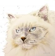 Blue eyed cat painting commission