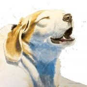 Tanner smiling dog painting