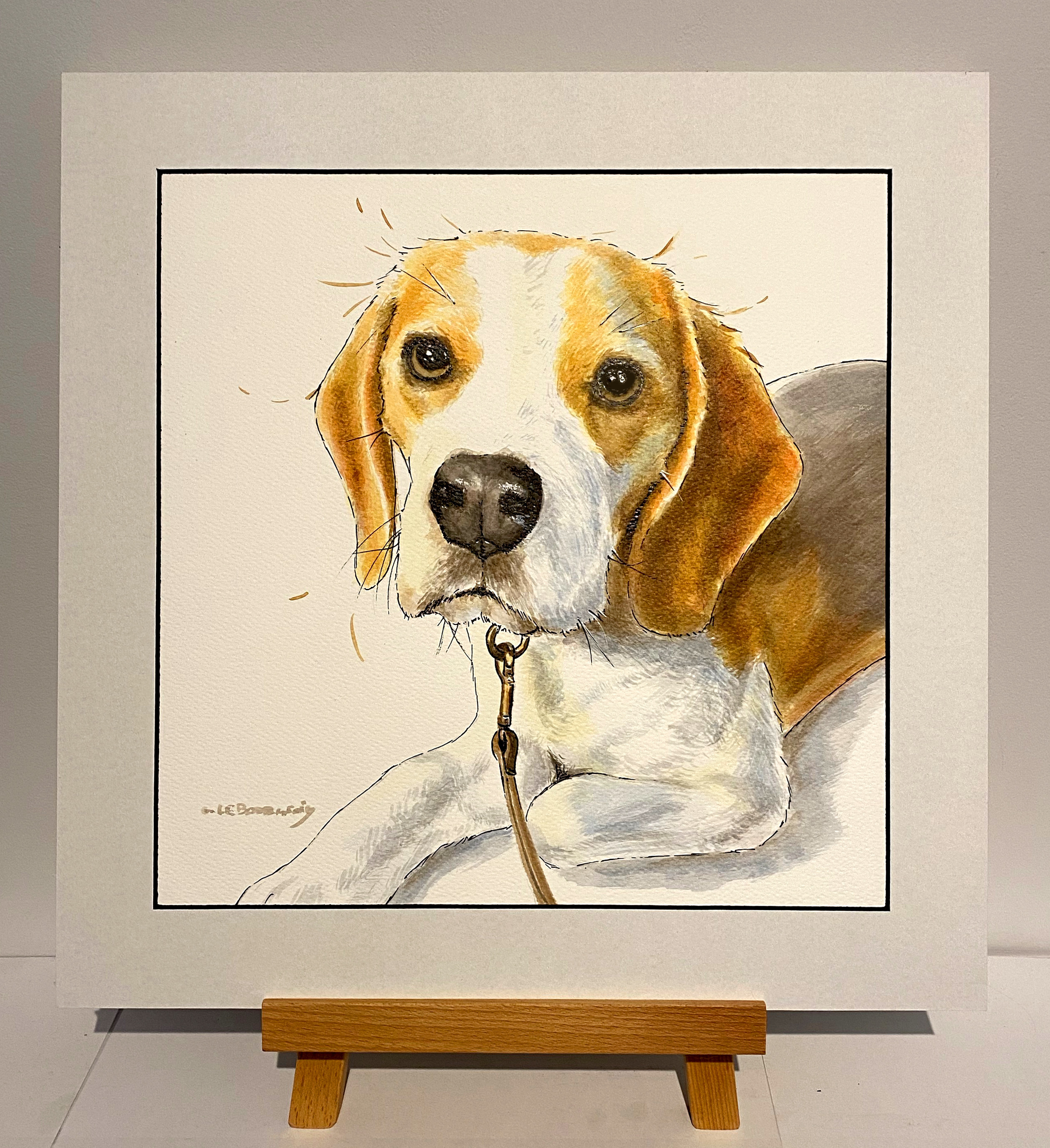 Pet portrait time