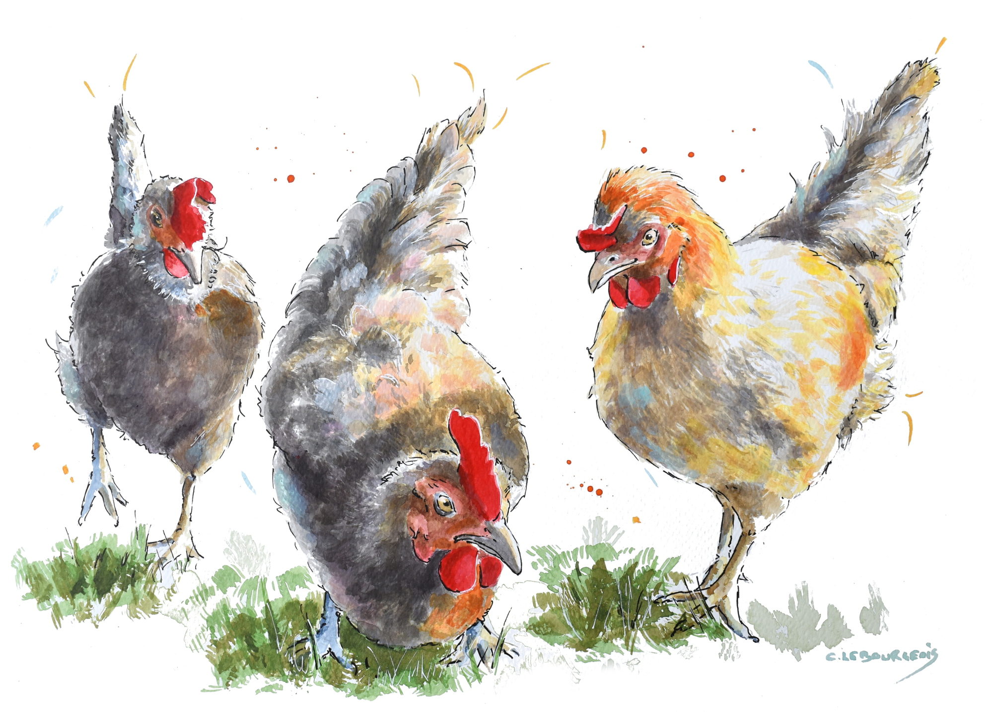 Chicken commission and art talk.