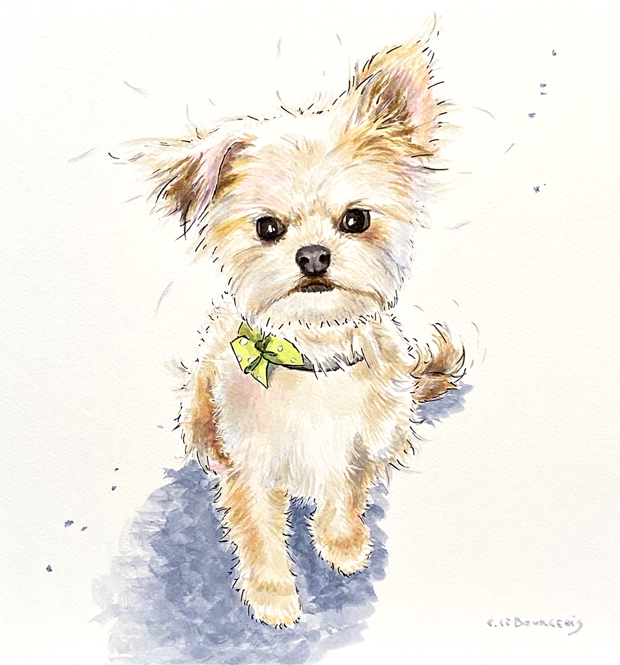 Pet portrait time lapse and art talk