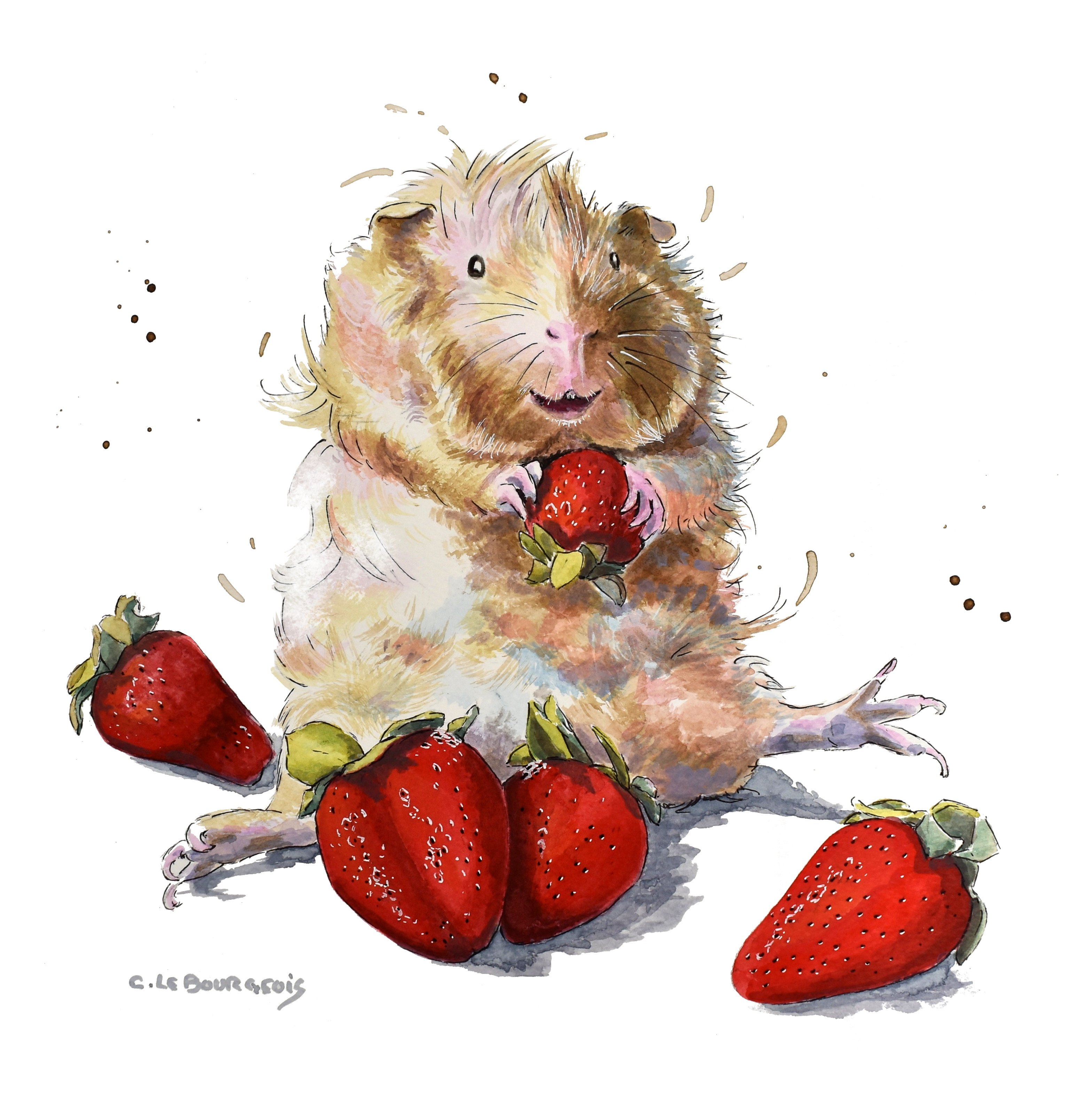 Butterscotch the Guinea pig, Painting and story!
